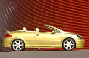 """Bas de caisse """"Nickel"""" Esquiss'Auto pour 307 3 et 5 portes et CC"""