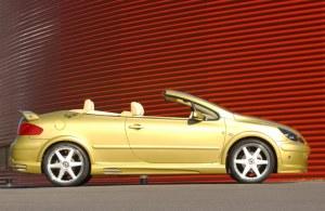 """Jeu de 4 extensions d'ailes """"Nickel"""" Esquiss'Auto pour 307 3 et 5 portes et CC"""